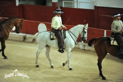 Spectacle-equestre-Palavas-10