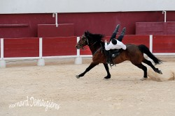 Spectacle-equestre-Palavas-100