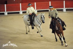 Spectacle-equestre-Palavas-12