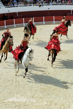 Spectacle-equestre-Palavas-13