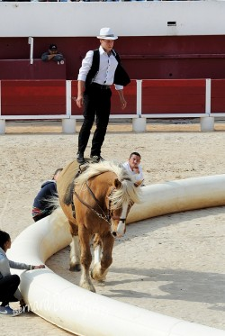 Spectacle-equestre-Palavas-18