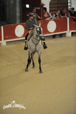 Spectacle-equestre-Palavas-20
