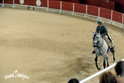 Spectacle-equestre-Palavas-22