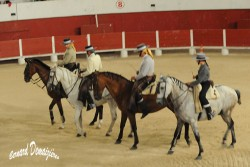 Spectacle-equestre-Palavas-23