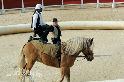 Spectacle-equestre-Palavas-24