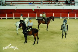 Spectacle-equestre-Palavas-26