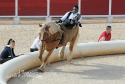 Spectacle-equestre-Palavas-30