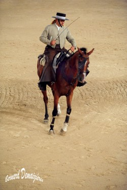 Spectacle-equestre-Palavas-31