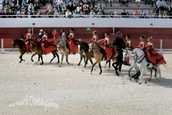 Spectacle-equestre-Palavas-3
