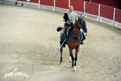 Spectacle-equestre-Palavas-44