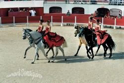 Spectacle-equestre-Palavas-4