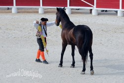 Spectacle-equestre-Palavas-55