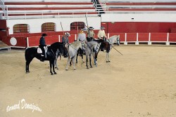 Spectacle-equestre-Palavas-58