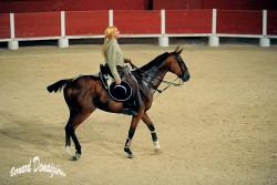 Spectacle-equestre-Palavas-59