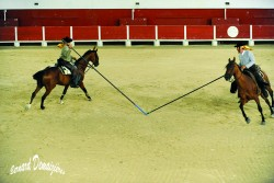 Spectacle-equestre-Palavas-6
