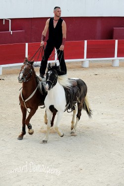 Spectacle-equestre-Palavas-60