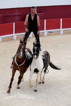 Spectacle-equestre-Palavas-61