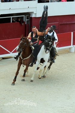 Spectacle-equestre-Palavas-67