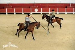 Spectacle-equestre-Palavas-7