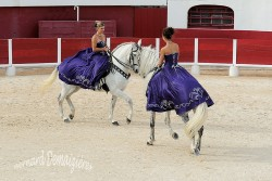 Spectacle-equestre-Palavas-70