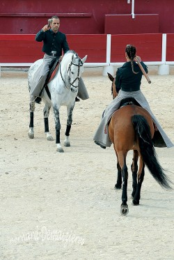 Spectacle-equestre-Palavas-73
