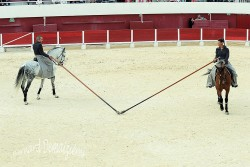 Spectacle-equestre-Palavas-74
