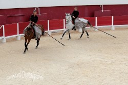 Spectacle-equestre-Palavas-78