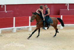 Spectacle-equestre-Palavas-80