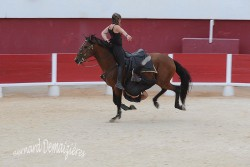 Spectacle-equestre-Palavas-81