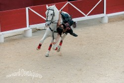 Spectacle-equestre-Palavas-85