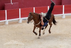 Spectacle-equestre-Palavas-89