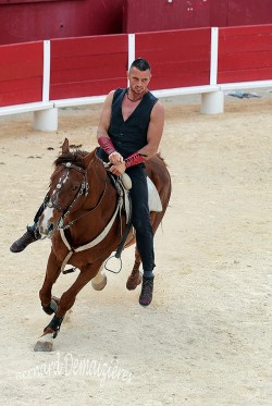 Spectacle-equestre-Palavas-90