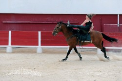Spectacle-equestre-Palavas-92