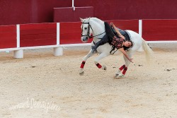 Spectacle-equestre-Palavas-93