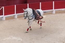 Spectacle-equestre-Palavas-94