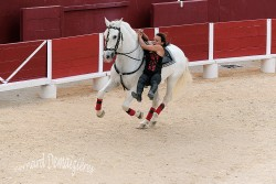 Spectacle-equestre-Palavas-95
